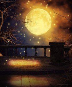 月とツキと女性♪